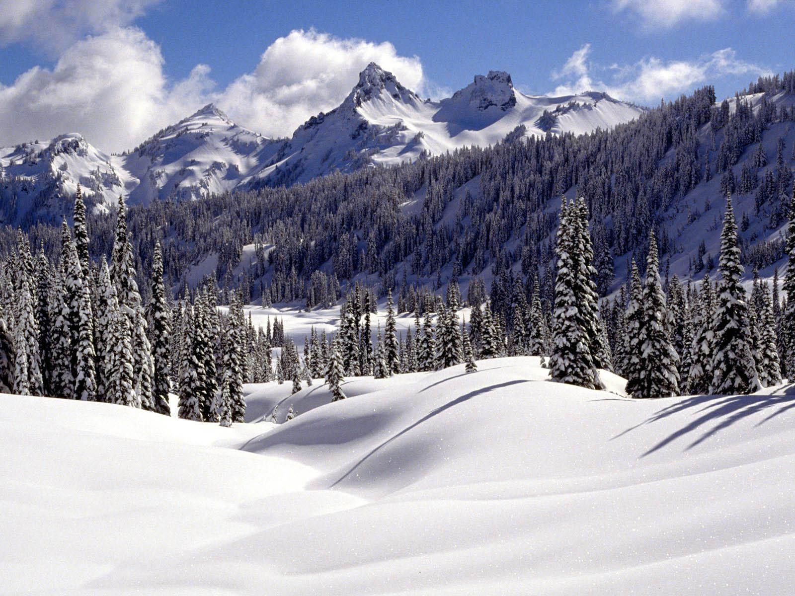 Displaying 9 gt images for snow desktop wallpaper