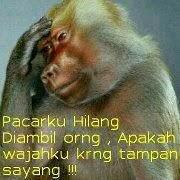 Hello, ! AGEN POKER ONLINE and Toko belanja online INDONESIA TERPERCAYA
