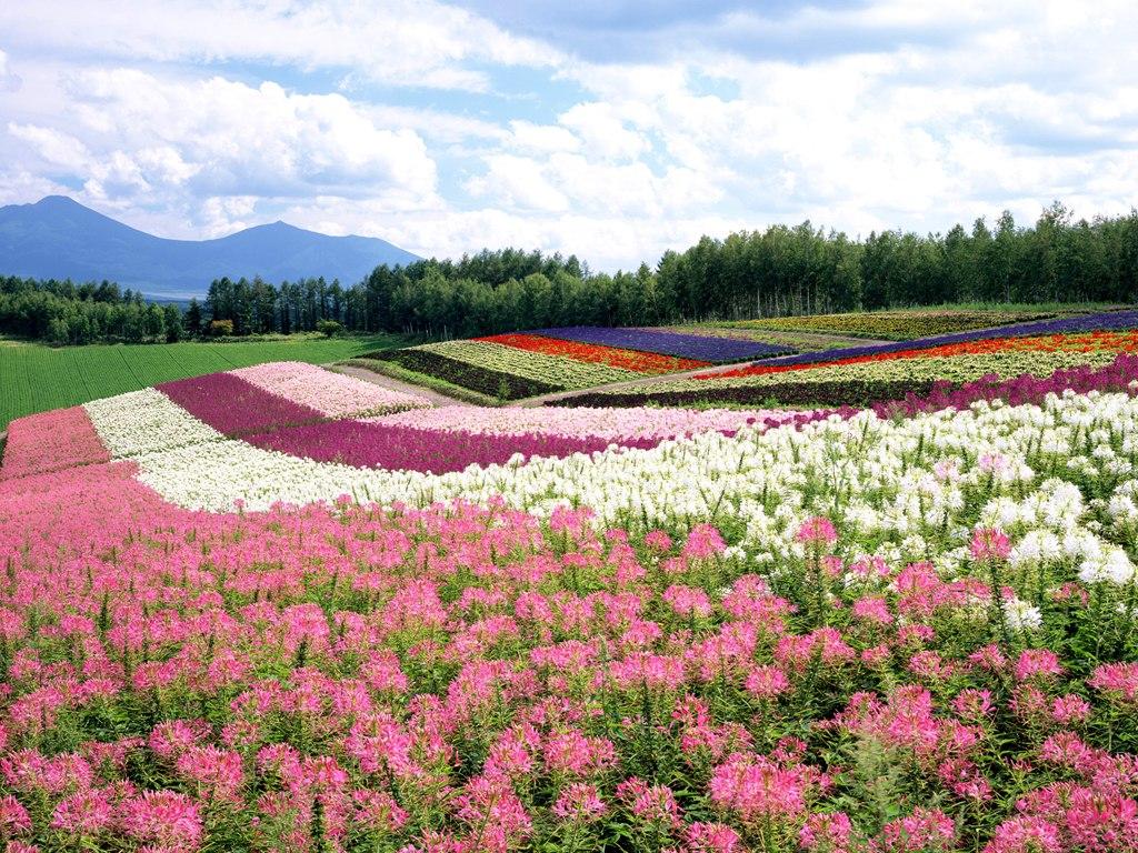 Hokkaido, Japan - Tourist Destinations
