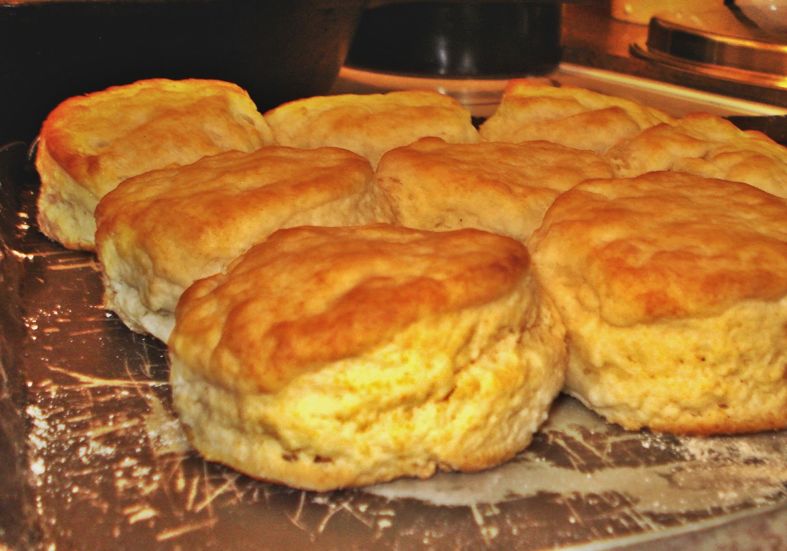 Court Cafe Southern Buttermilk Biscuits ~ Crackerjack23