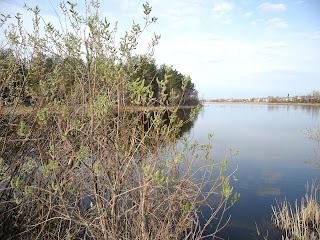 неподалеку расположилось озеро