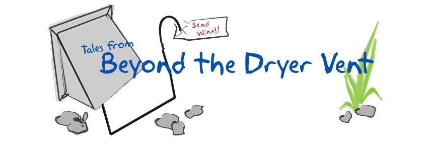 Beyond the Dryer Vent