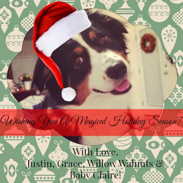 Merry Christmas Willow the Australian Shepherd Grace Fleming