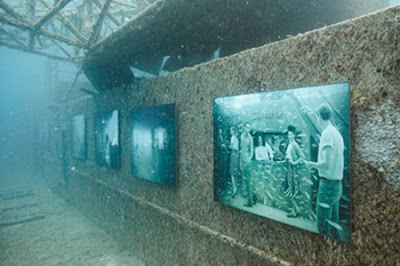 Amazing Underwater Art Gallery- 15 Images