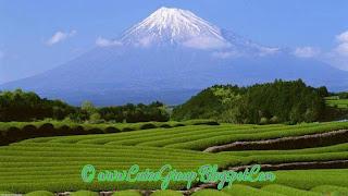 Global Great Society Japan ranked 5