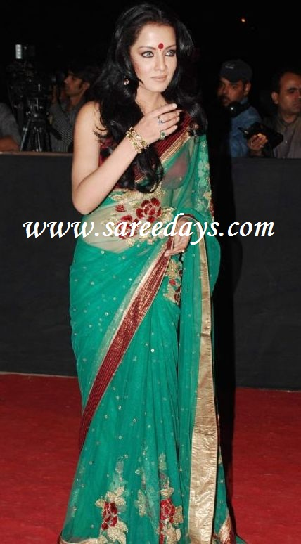 Ankita Lokhande Black Saree Green designer net sareeAnkita Lokhande Black Saree