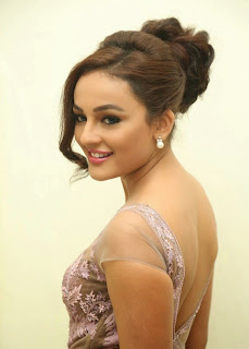 Seerat Kapoor Stills at Tiger Movie Audio Launch 15.jpg