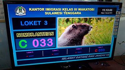 sistem antrian imigrasi Wakatobi