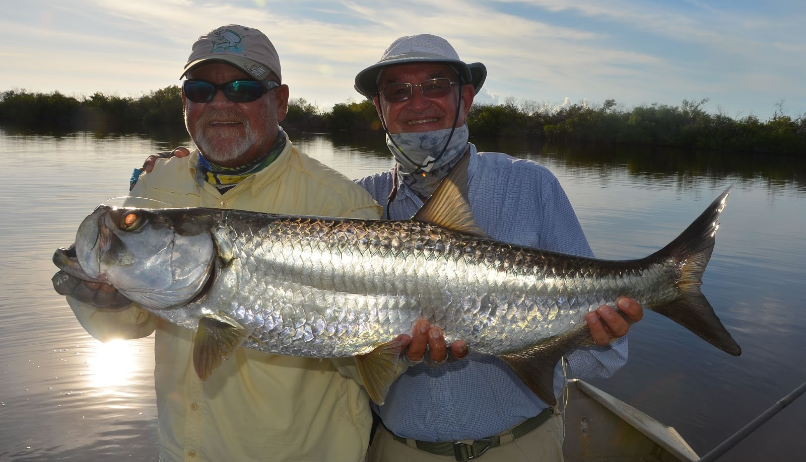 Trips flies and fish great inagua bahamas ii for Tarpon fish pictures
