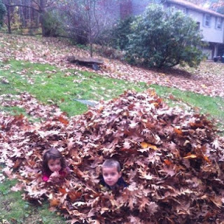 Kids and Leaf piles