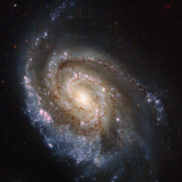 Supernovae in Spiral Galaxy NGC 6984