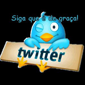 Siga-me no Twitter ;D