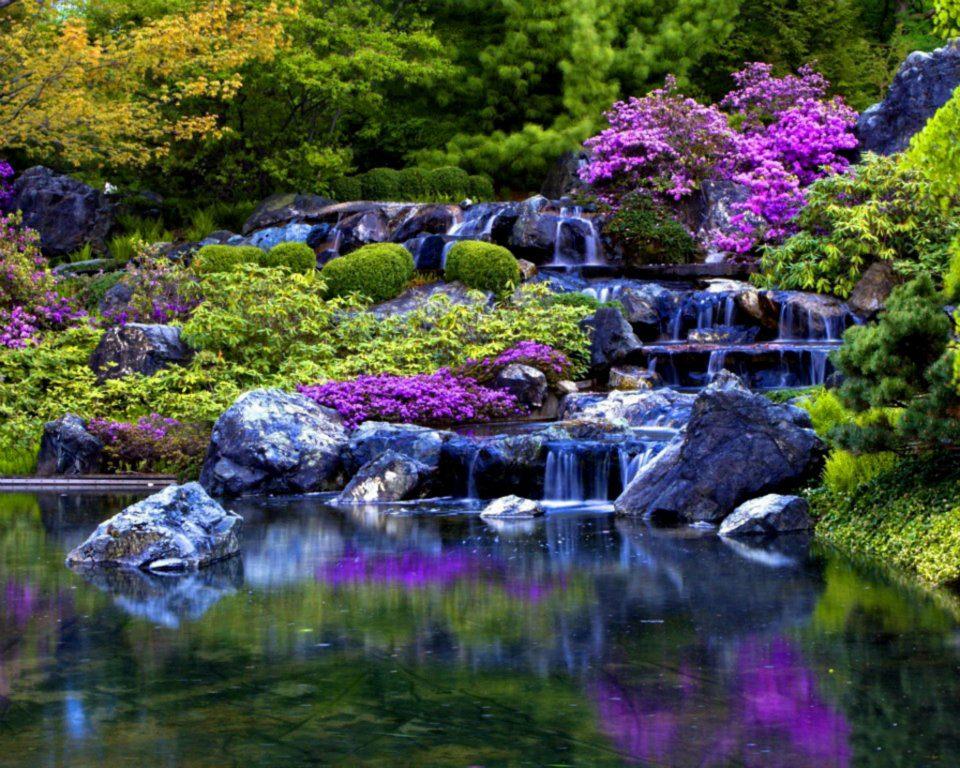 Fotografias de flores y cascadas fotografias y fotos for Fotos cascadas