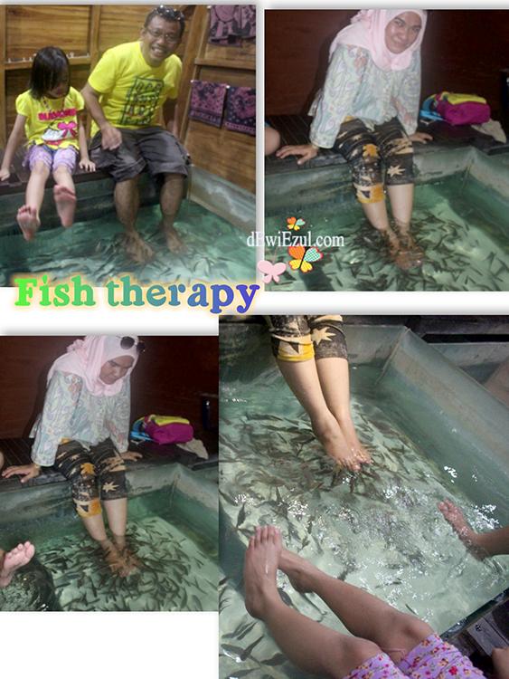 pengalaman terapi ikan