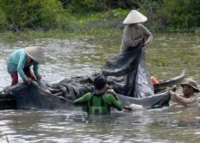 Cả gia đình cùng đánh bắt cá trong mùa lũ.