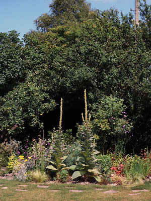 Sussex garden in late summer