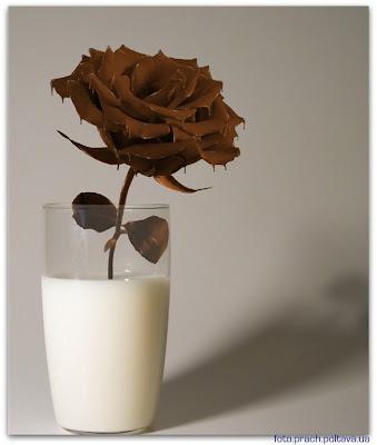Шоколадная роза в молоке