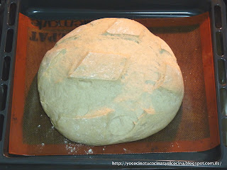 masa pan centeno con cerveza levada en bandeja del horno