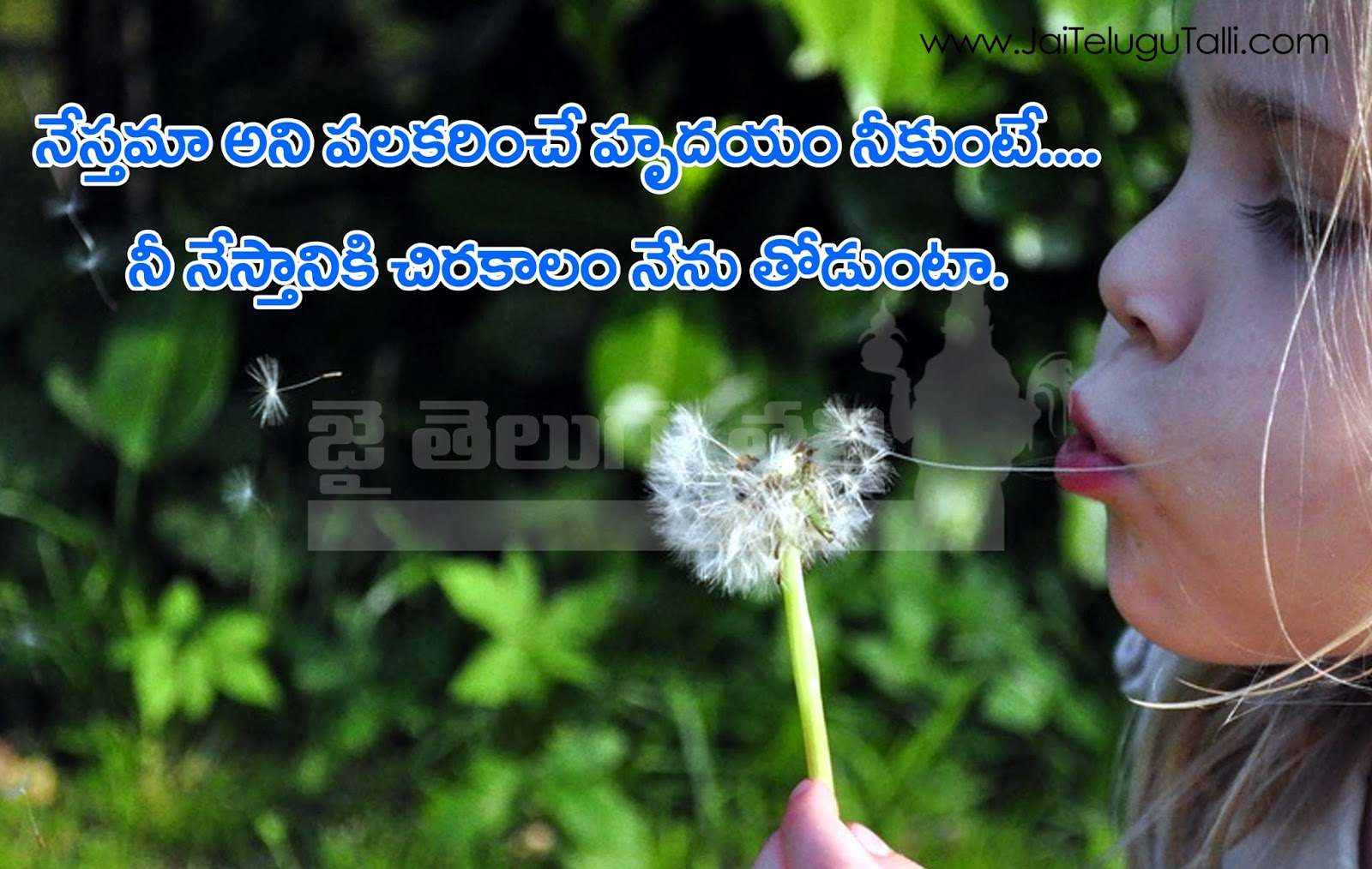 Nice Quotes About Friendship Beautiful Friendship Feelings And Thoughts Wih Images Telugu