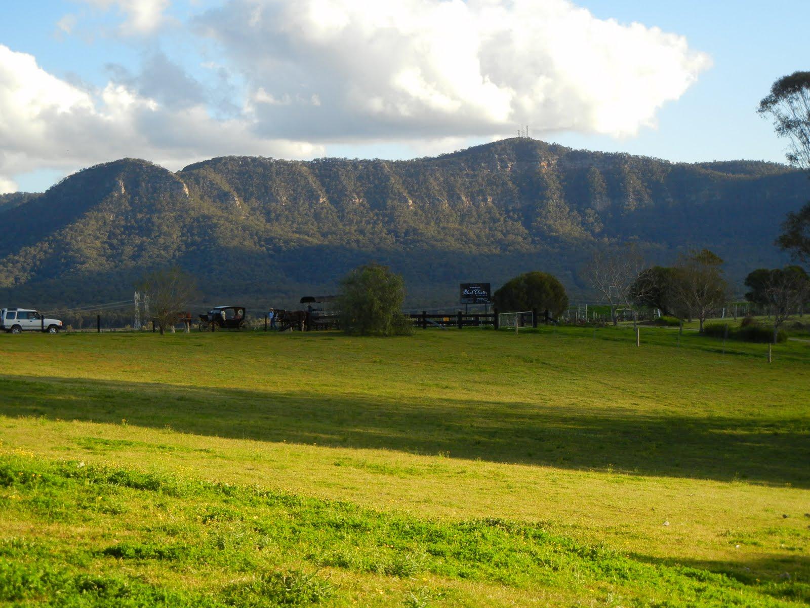 hunter valley from sydney - photo#11