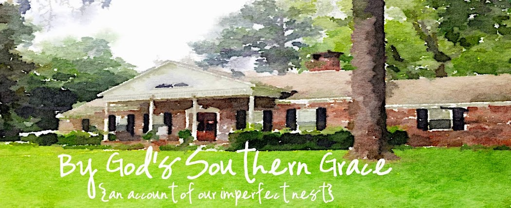 By God's Southern Grace
