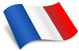 QUIZ E TEST DI LINGUA FRANCESE ONLINE GRATIS