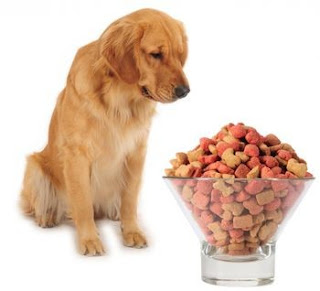 tips for choose the right dog food