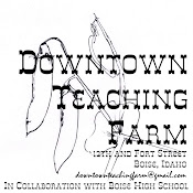 Downtown Teaching Farm Logo