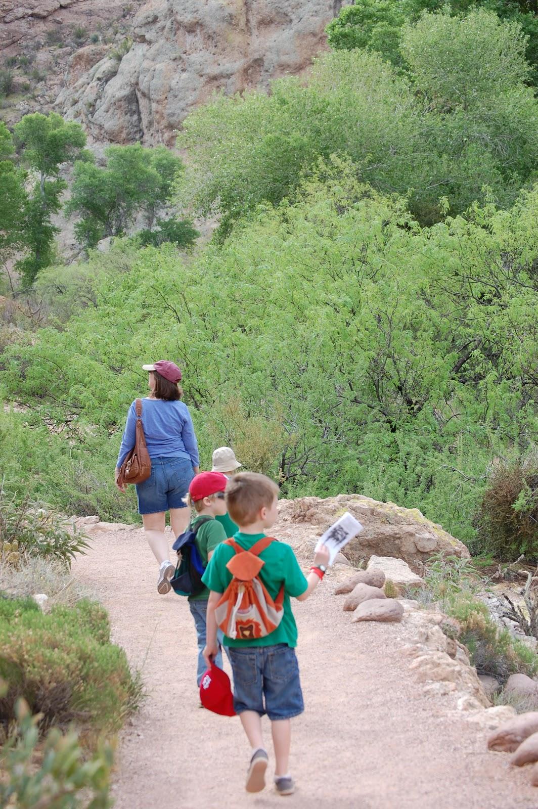 Why Nature Walks Heather Haupt