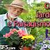 Curso de Jardinagem e Paisagismo Online [+Extra]