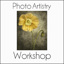photoartistryworkshop.com