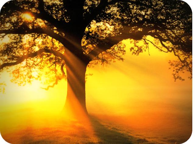 सूर्य रौशनी से स्वास्थ्य लाभ