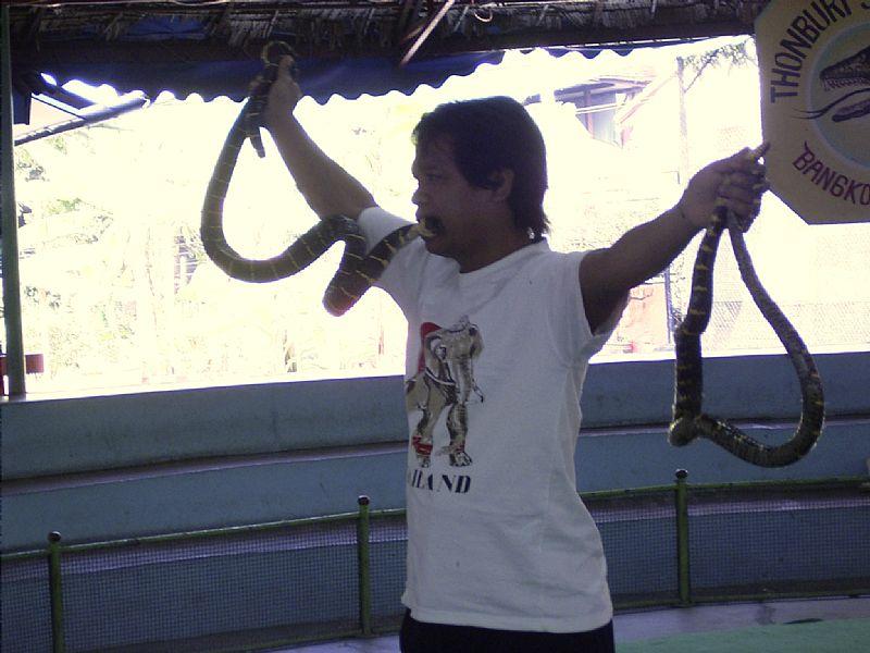 泰国の変なスポット: Thonburi Snake Farm /Bangkok