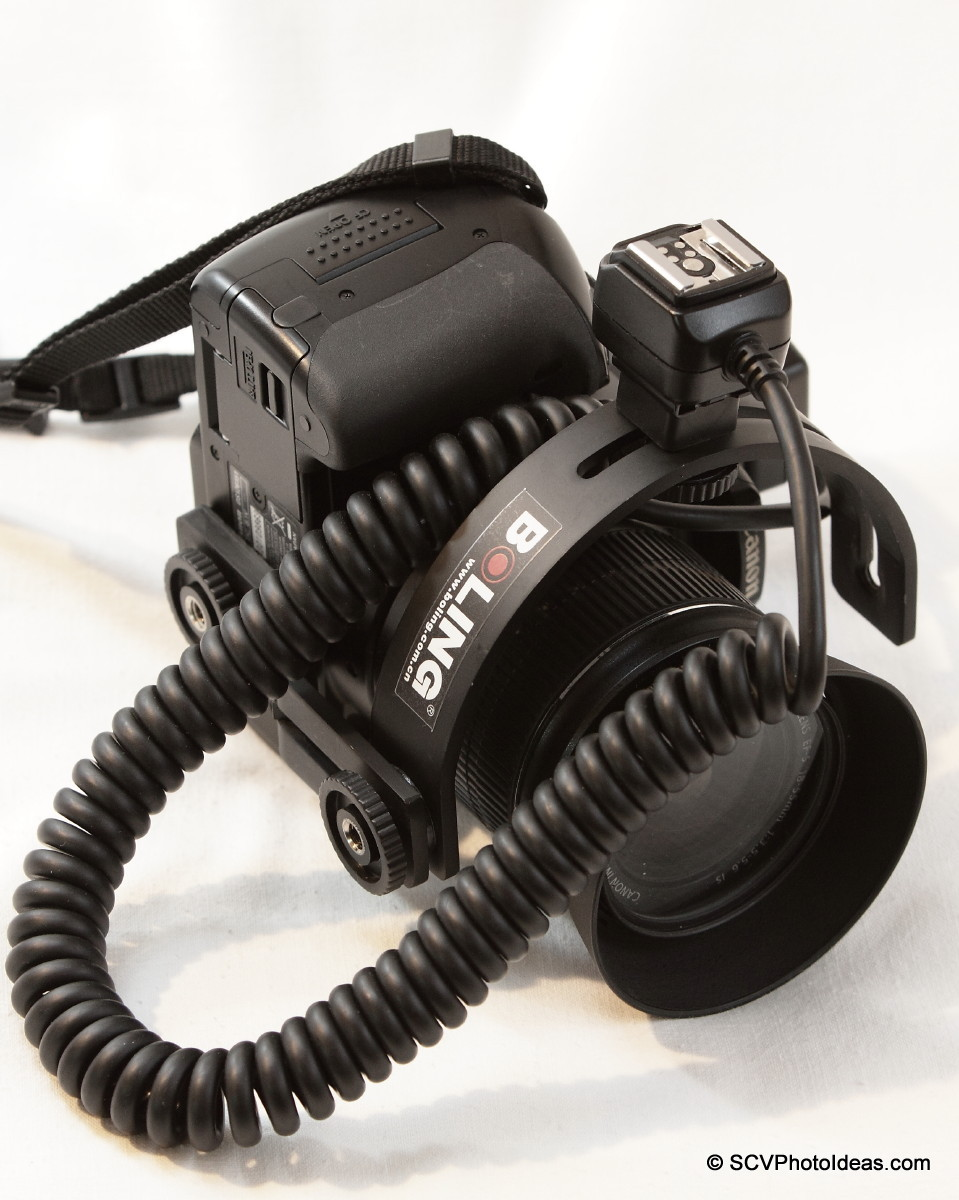 Boling C-Shape Flash Bracket on EOS 400D w/ off camera flash cord - portrait