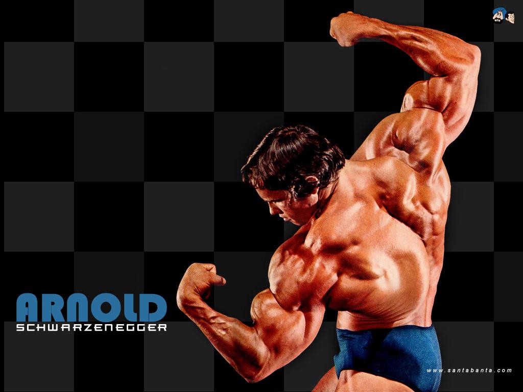 http://2.bp.blogspot.com/-8eg_jpUNvYE/TsKv7EXlV5I/AAAAAAAAGRk/AaTrzRh2cpw/s1600/Arnold_Schwarzenegger_Wallpaper.jpg
