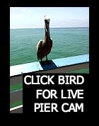 San Clemente Pier Cam