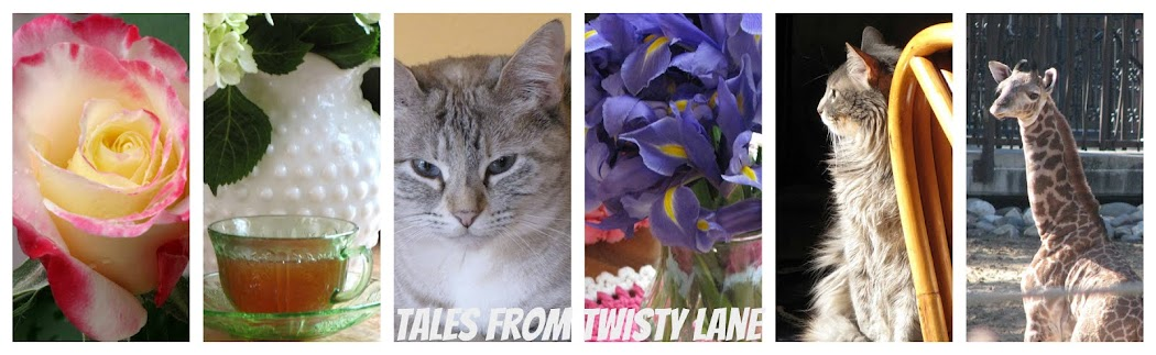 Tales From Twisty Lane