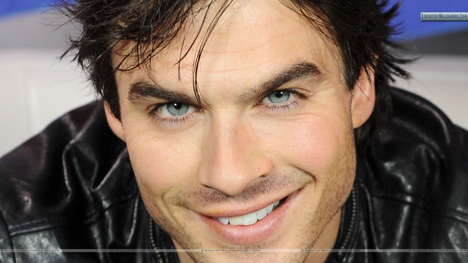 Fangs for the fantasy dear ian somerhalder missing black for Domon emilie
