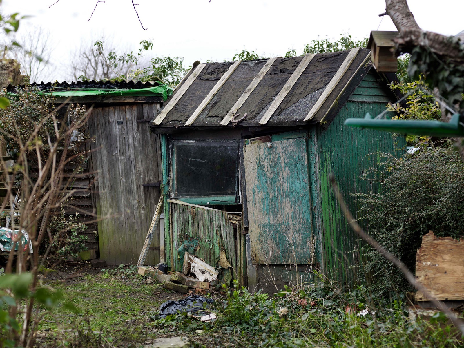 That S Not My Age That Is My Age Garden Sheds