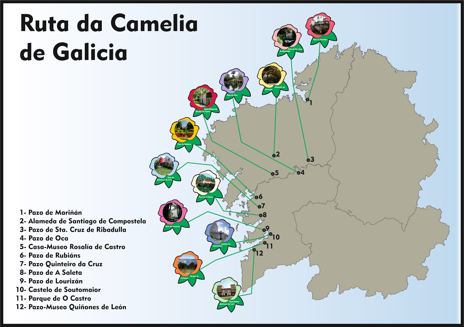 Ruta da Camelia