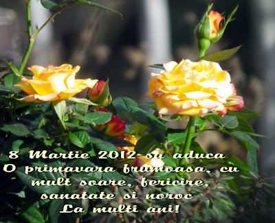March 8 2012, Women Day, Mother Day, Ziua mamei, Ziua internationala a femeii