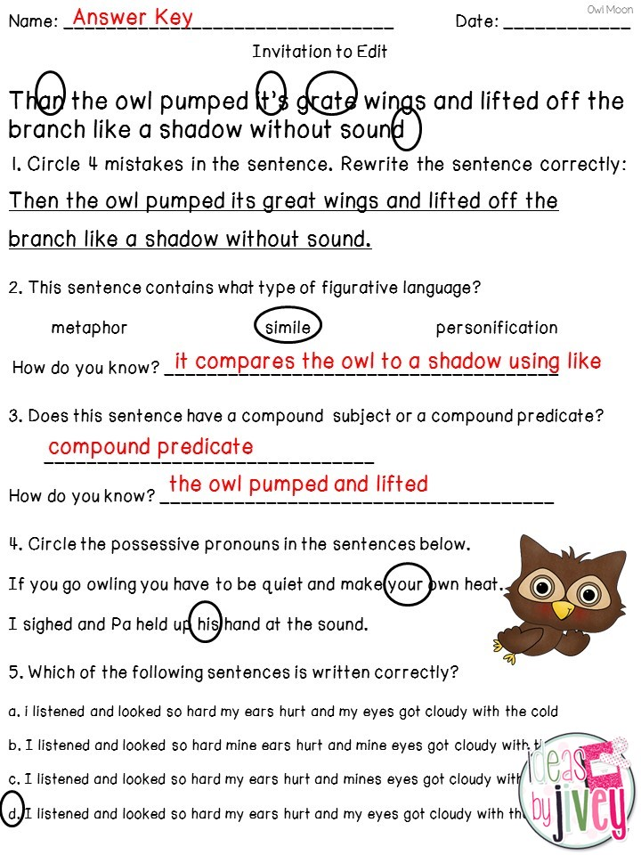 Mentor Sentence Planning Present Using Owl Moon Ideas By Jivey – Dol Worksheets