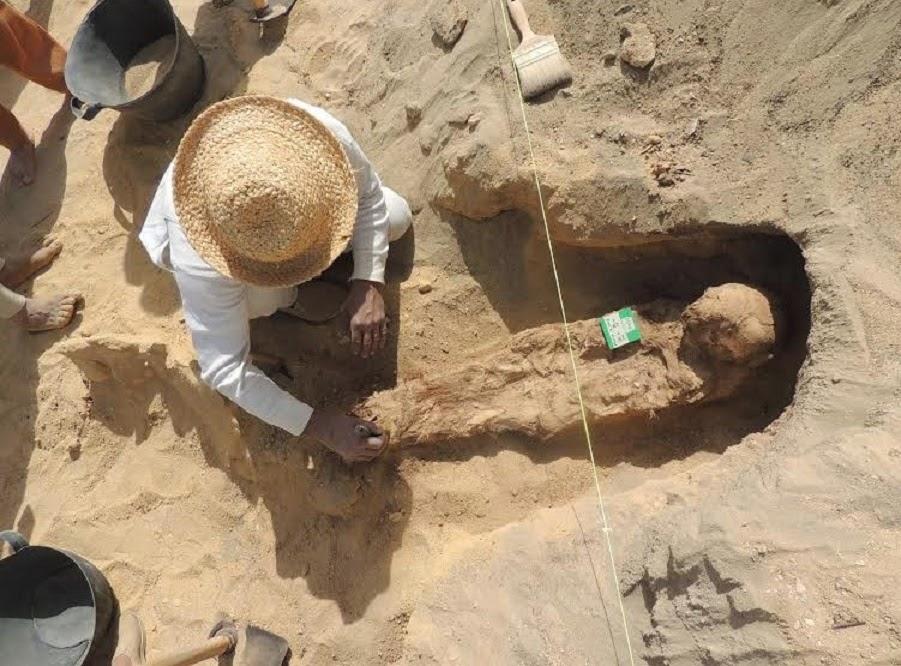 BYU dig license revoked over 'million mummy' claim
