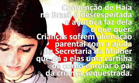 O BRASIL NÃO RESPEITA A CONVENÇÃO DE HAIA