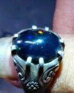 bibit jarong batu black opal