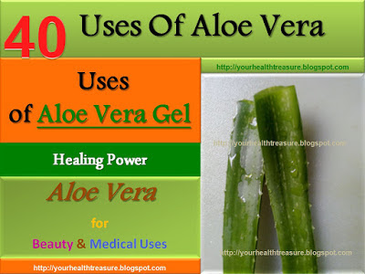 Discussion on this topic: 7 Amazing Benefits And Uses For Aloe , 7-amazing-benefits-and-uses-for-aloe/