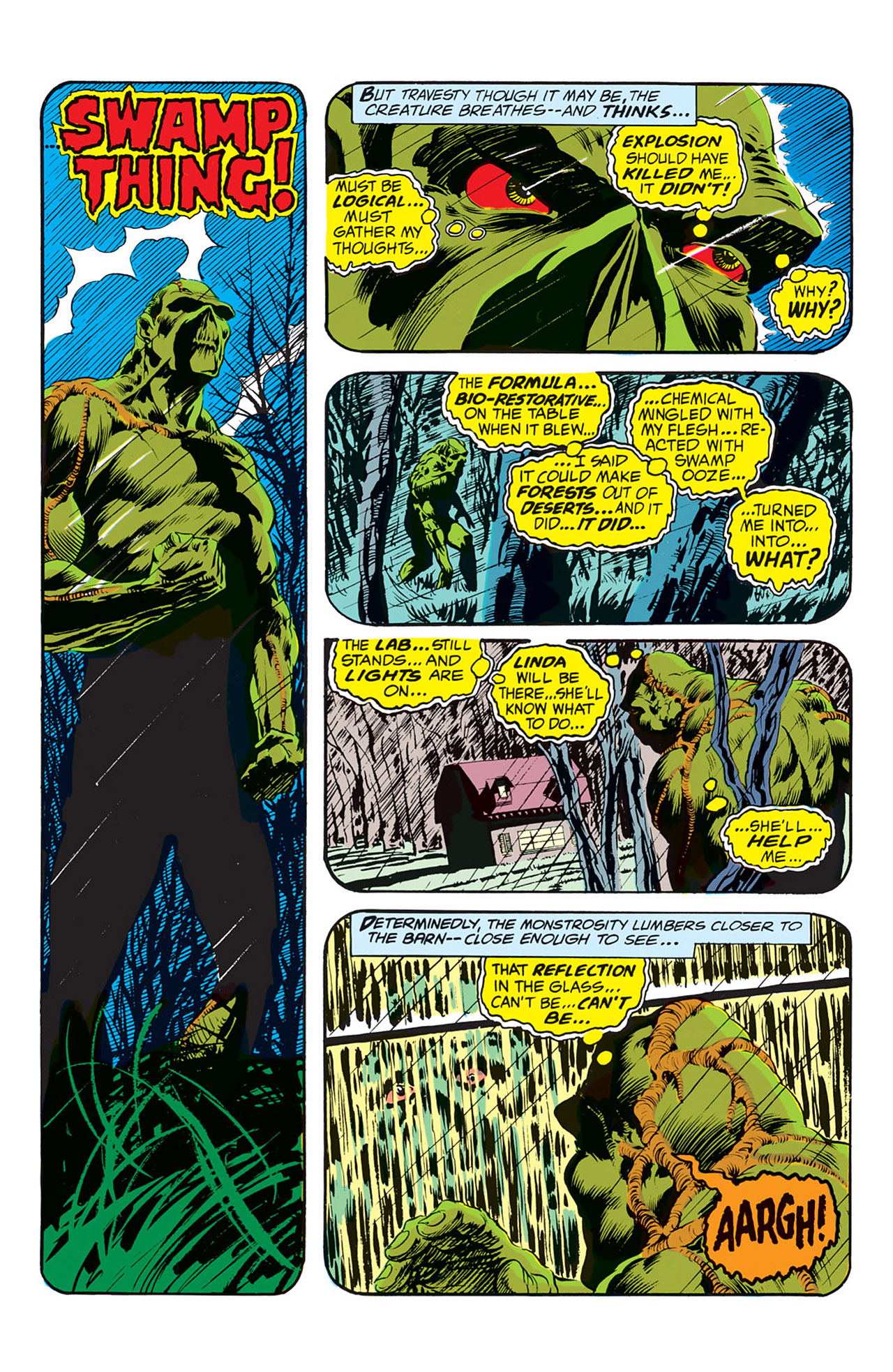 Swamp Thing (1972) Issue #1 #1 - English 17