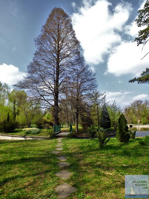 peisaj aprilie gradina botanica bucuresti