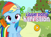 Little Pony Hair Salon