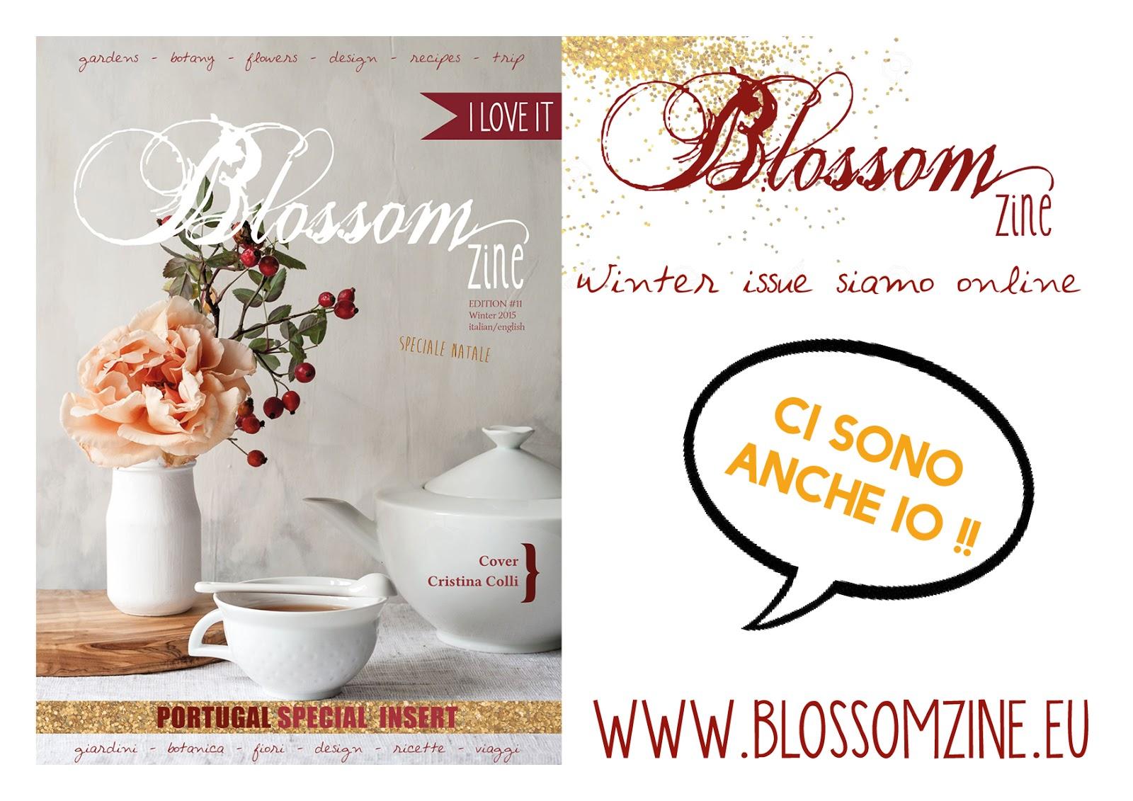 BLOSSOM ZINE WINTER 2015